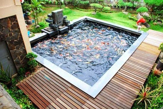 Taman Minimalis Dengan Kolam Ikan di Belakang Rumah