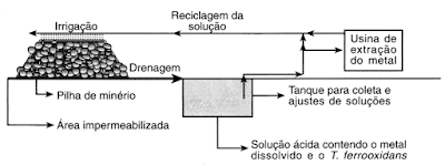 esquema processo biolixiviação bacteriana