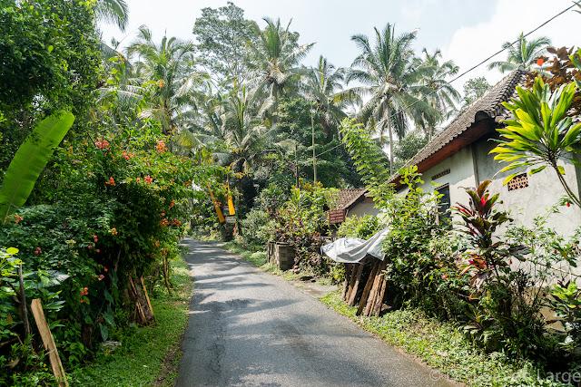 Pakudui - Ubud - Bali
