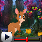 G4K Kangaroo Escape Game …