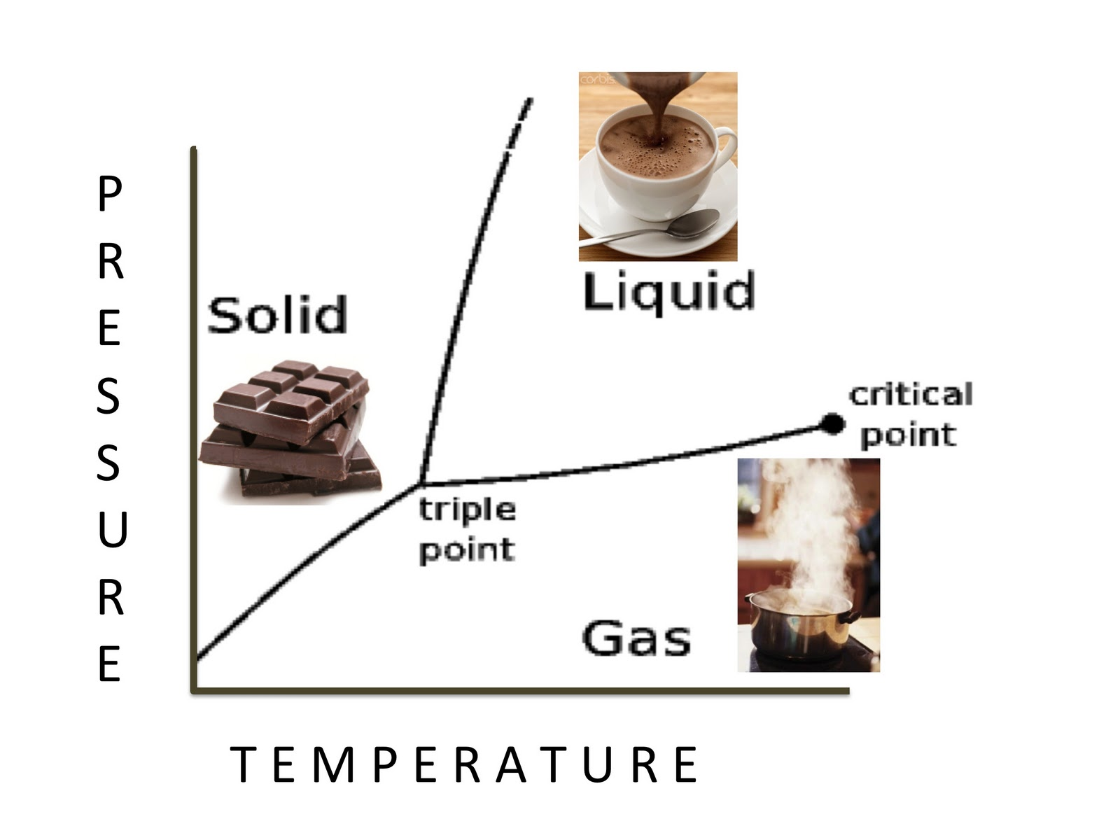 Phase Diagram Solid Liquid Gas Deciduous Forest Layers It 39s Just A Pedigreed Housewife World