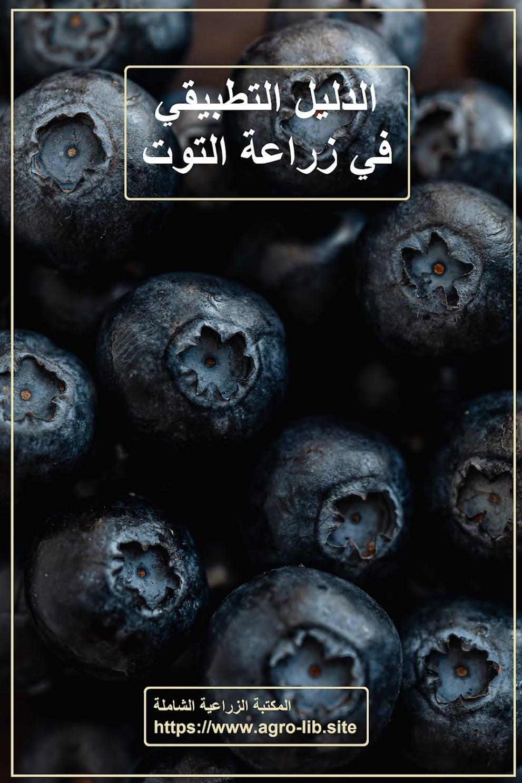 كتاب : الليل التطبيقي في زراعة التوت