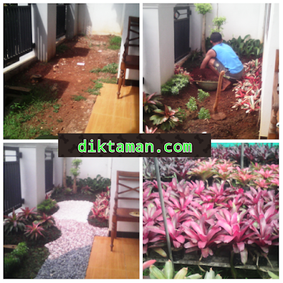 diktaman.com