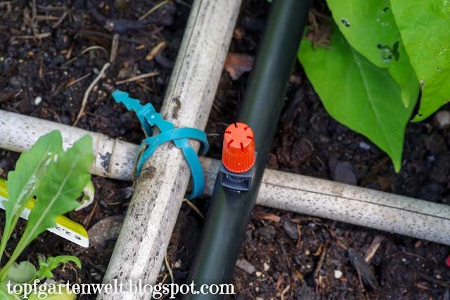 Kleinflächendüsen von Gardena im Hochbeet - Gartenblog Topfgartenwelt