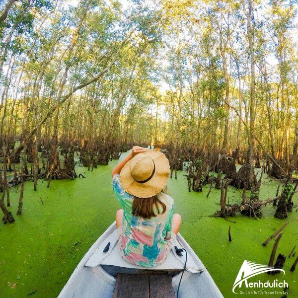 Du lịch rừng tràm Trà Sư