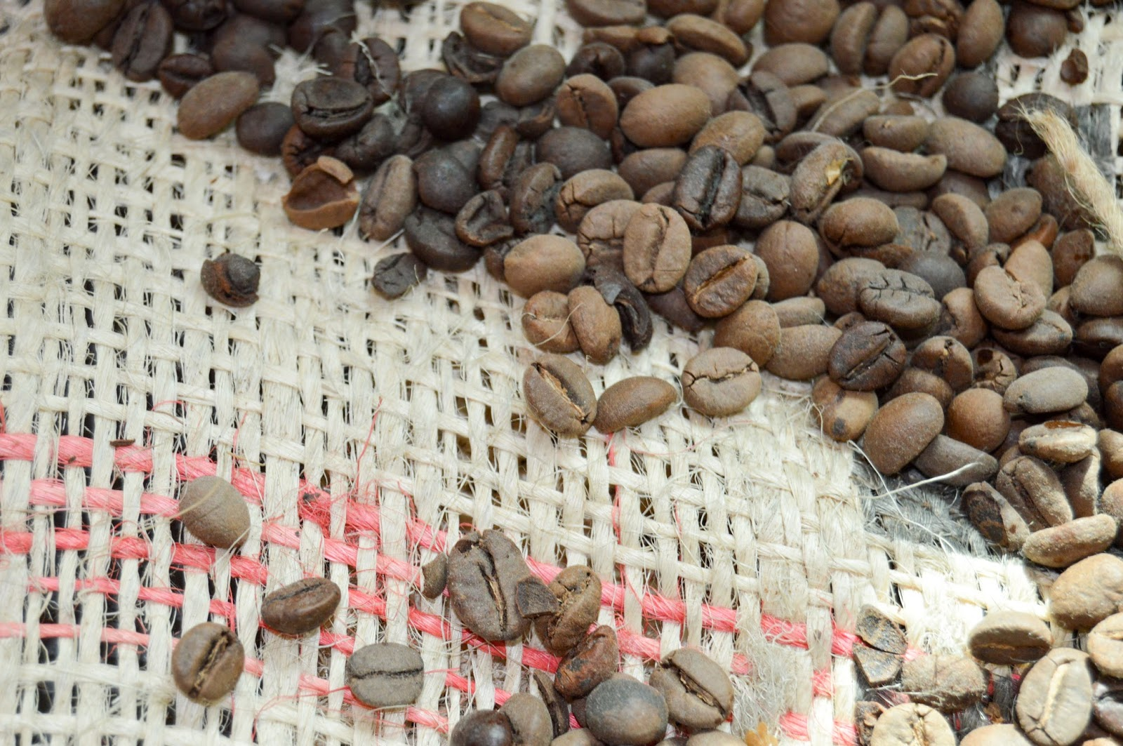 Coffee Beans Free Stock Photos & Wallpapers