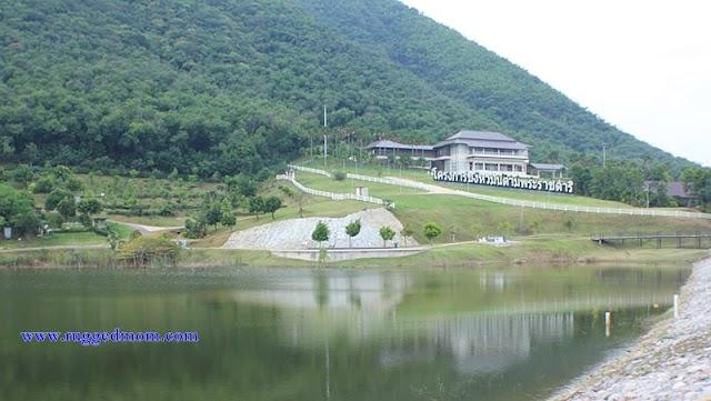 Thailand | Apa yang menarik di Chang Hua Man Royal Project ?