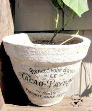 transfer on a clay pot