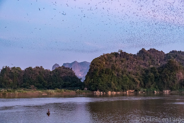 Bat Cave - Région de Hpa An - Myanmar Birmanie