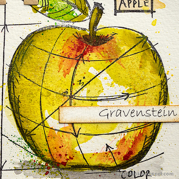 Layers of ink - Watercolor Apples Art Journal Tutorial by Anna-Karin Evaldsson. Gravenstein apple.