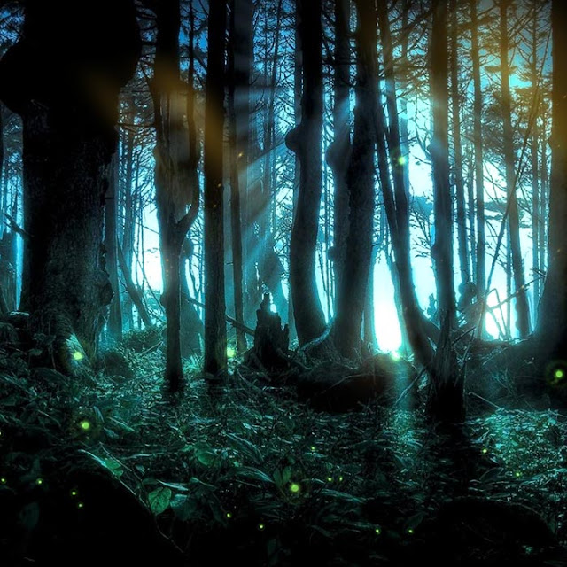 Mystic Forest Wallpaper Engine