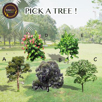 botaneco garden, kempen semai satu benih, hidupkan sebuah hutan, kempen alam sekitar, kempen dbkl