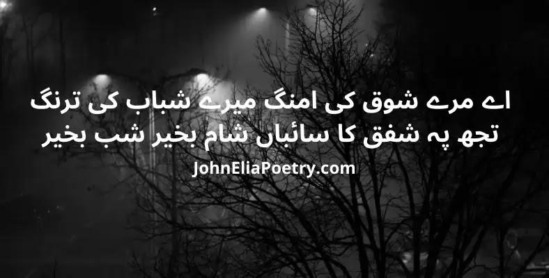 ae marey shoq ki umang mere shabab ki tarang John Elia
