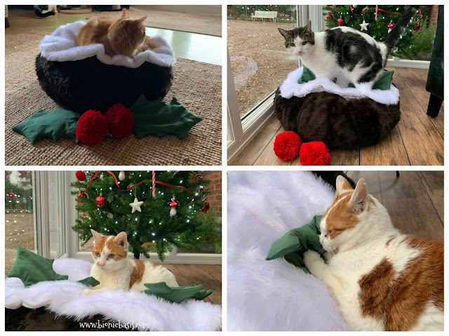Crafting with Cats Catmas Special - Part 3  ©BionicBasil® The Catmas Pudding Pouffe with Catnip Holly Leaves & Pom Pom Berries - The B Team Says YES