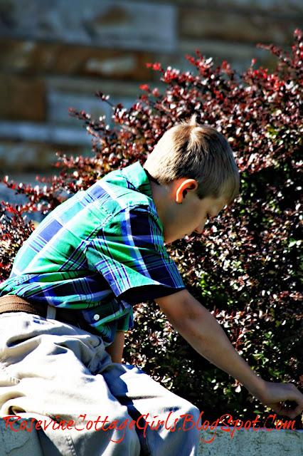 Little boy playing rosevinecottagegirls.com