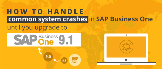 SAP Business One 9.1 Download | SAP B1 Software Download | SAP B1 Download | SAP B1 Download Free