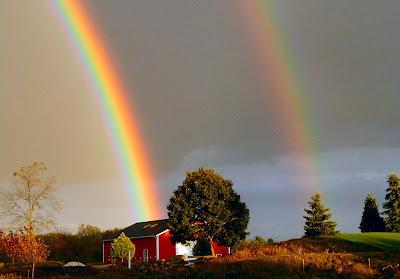97439-rainbow.jpg