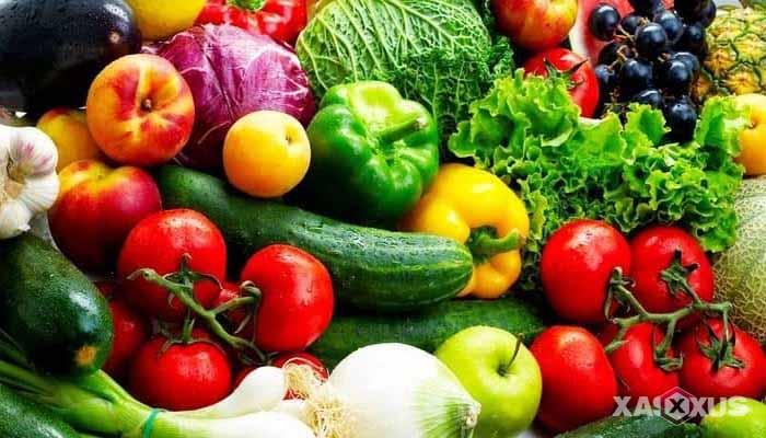 Fakta 10 - Janin 5 minggu membutuhkan asupan vitamin