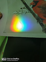 Rainbow on white