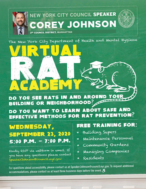 Rat Academy flyer