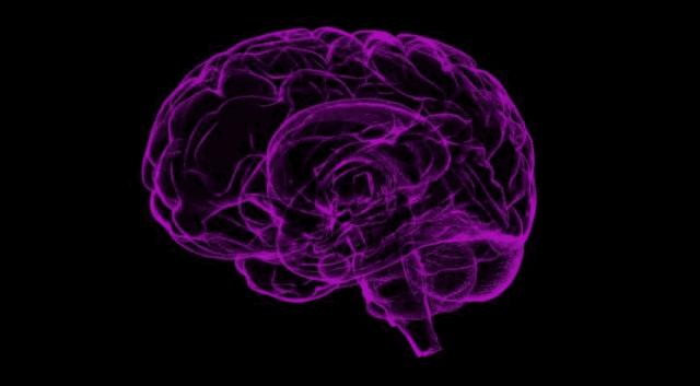 ما علاج التهاب الدماغ وما هي اعراضه واسبابه