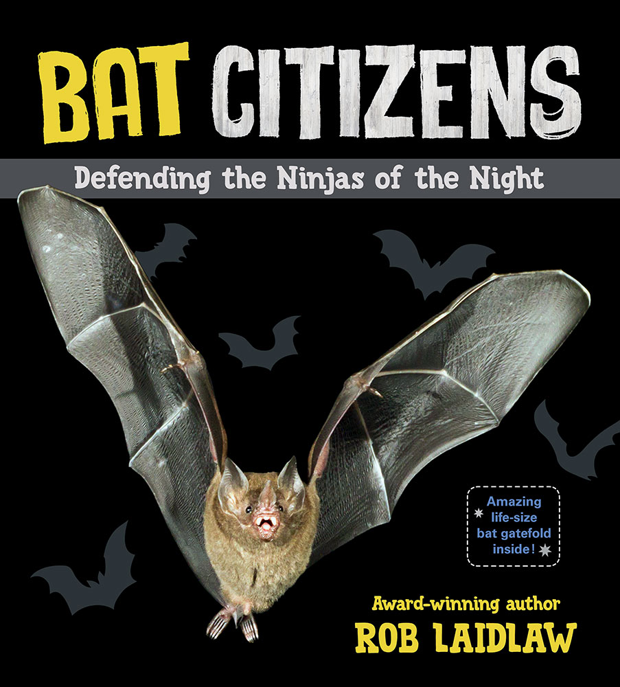Finished March 13 Bat Citizens Defending The Ninjas Of Night By Rob Laidlaw