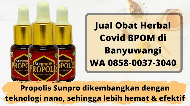 Jual Obat Herbal Covid BPOM di Banyuwangi WA 0858-0037-3040