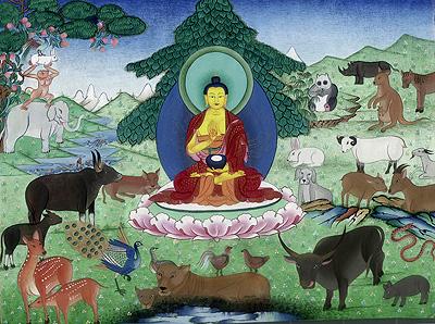 O Homem e Meio Ambiente: uma relação de interdependência