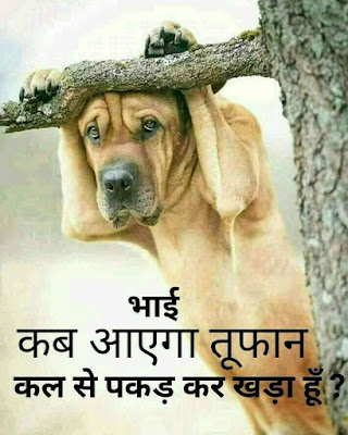 Bhai Kab Aayega Toofan Kal Se pakad Kar Khada Hu
