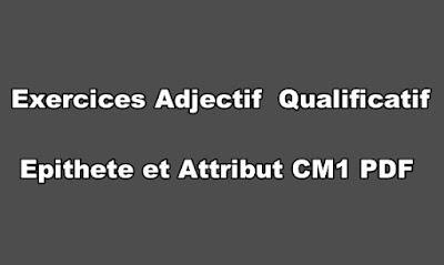 Exercices Adjectif Qualificatif Epithete et Attribut CM1 PDF
