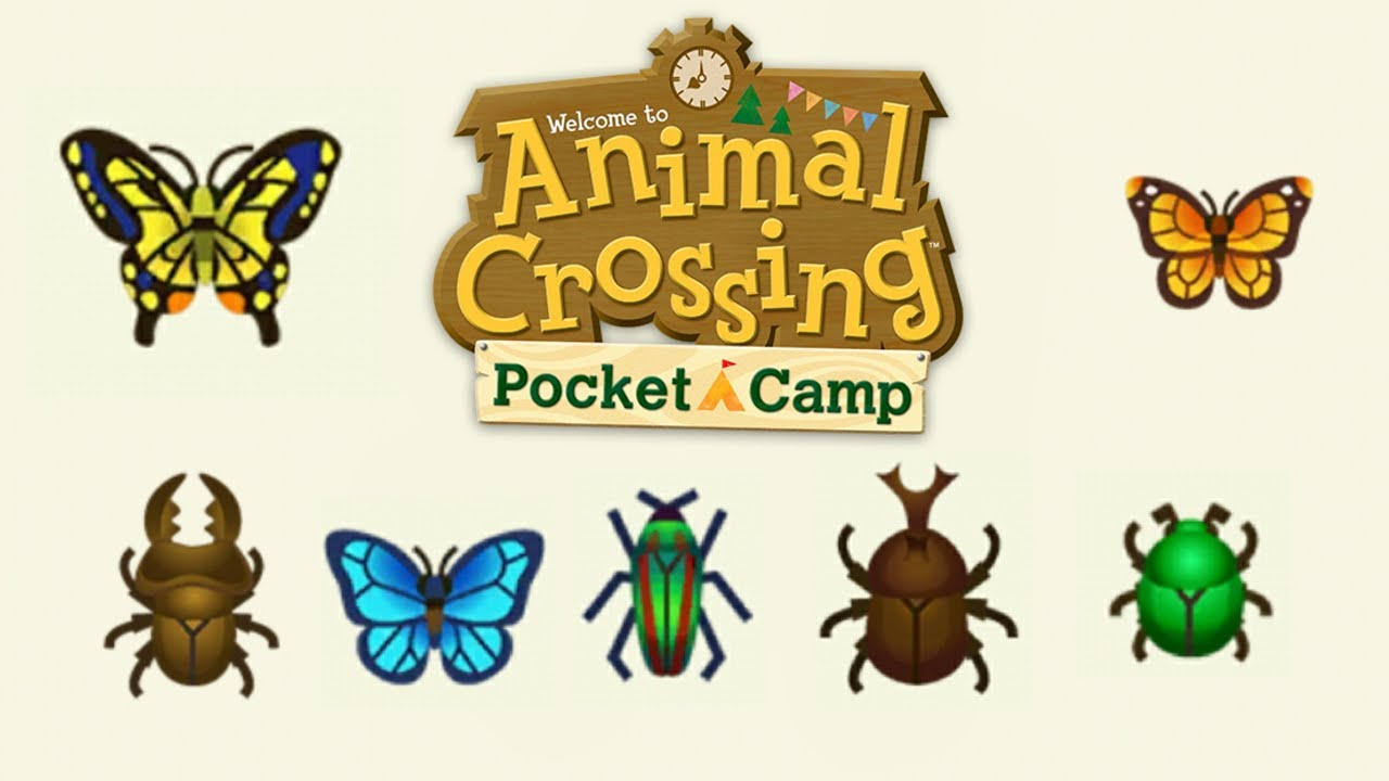 Price, time & locations: All marine animals in Animal Crossing New Horizons at a glance
