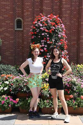 Flower & Garden photos