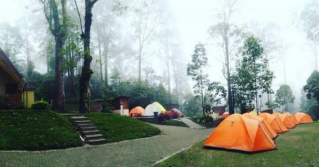 Mojosemi Forest Park;10 Top Destinasi Wisata Magetan