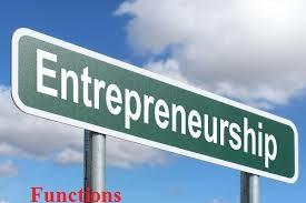 function of entrepreneurship