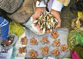 Barter system - Dried fish