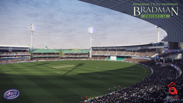 Don Bradman Cricket 14 PC Setup