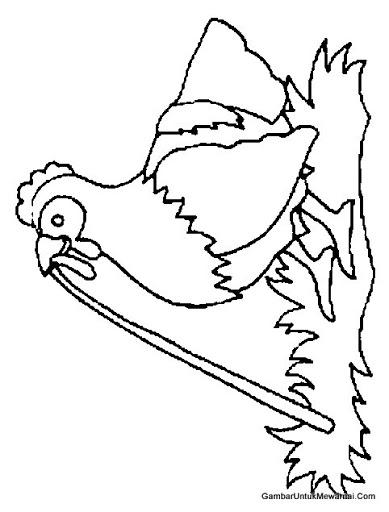 Menggambar dan Mewarnai Ayam untuk Anak Paud