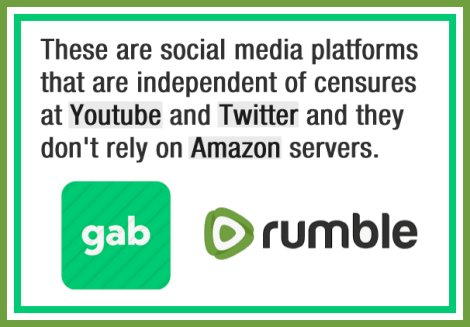 Gab and Rumble is the best social media in 2021.