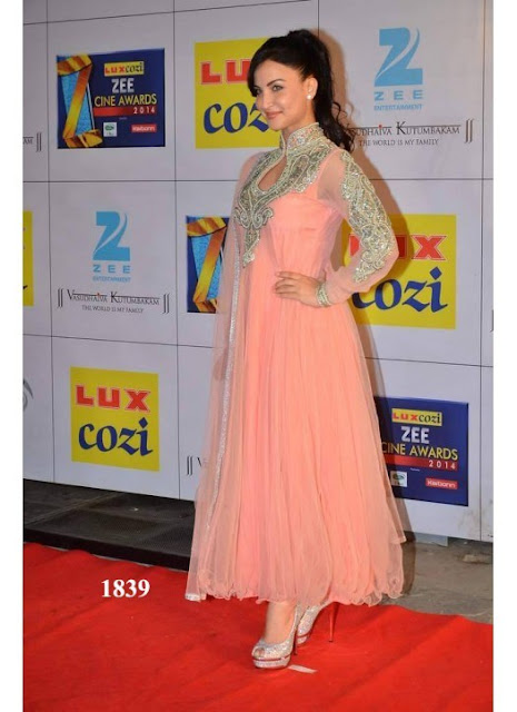 Elli Avram In Designer Peach Anarkali Suit At Zee Cine Awards