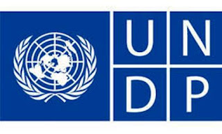 وظائف  UNDP