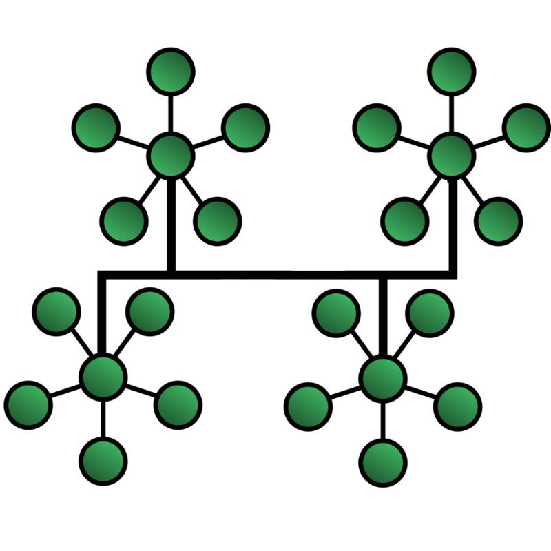 ট্রি টপোলজি (Tree Topology)