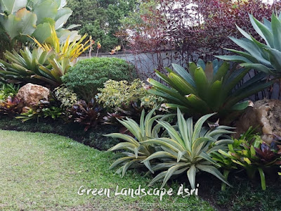 Tukang Taman Pontianak | Jasa Taman di Pontianak