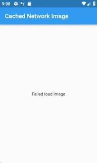Flutter image error widget