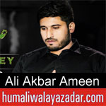 https://www.humaliwalayazadar.com/2020/01/ali-akbar-ameen-ayyam-e-fatima-noha-2020.html