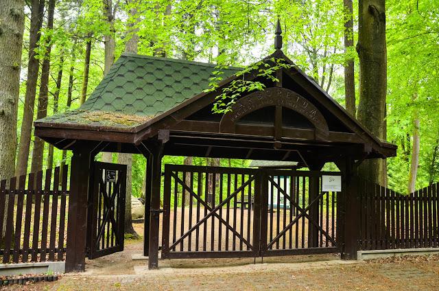 Arboretum w Karnieszewicach - mało znane miejsce, które nas zachwyciło