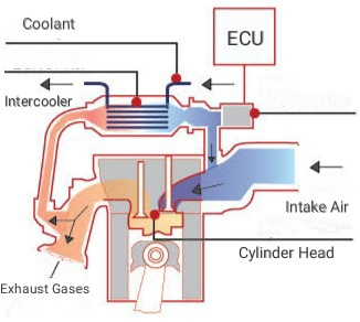 Exhaust gas recirculation autocurious