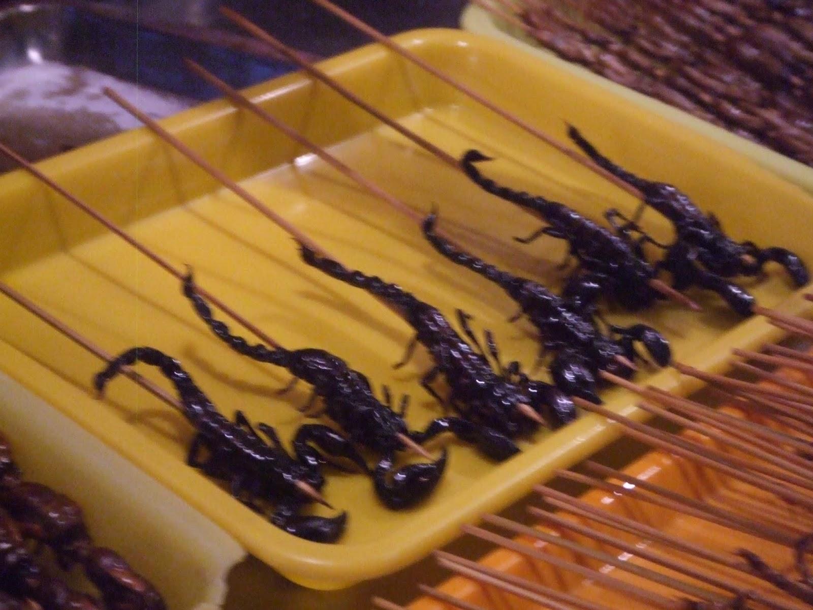 Skorpione am Spieß in gelber Wanne