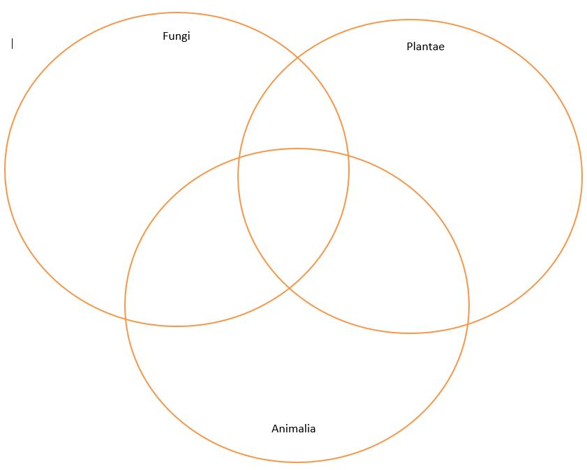venn diagram of protists and fungi