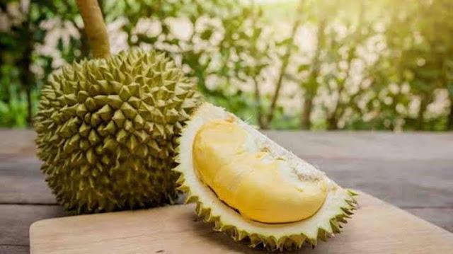 Berikut Supplier Jual Durian Montong di Pontianak, Kalimantan Barat