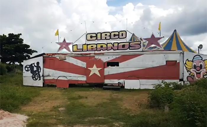 Impedidos de trabalhar em razão do coronavírus, integrantes de circo passam necessidade